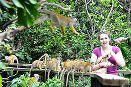 Rainforest Adventure Tour | Animal Encounters | Wildlife Encounters | Monkeys | Miami & South Florida
