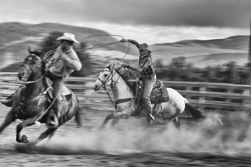 Cowboys roping on a Colardo ranch