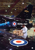 Hunting Royal Navy Hawk.jpg
