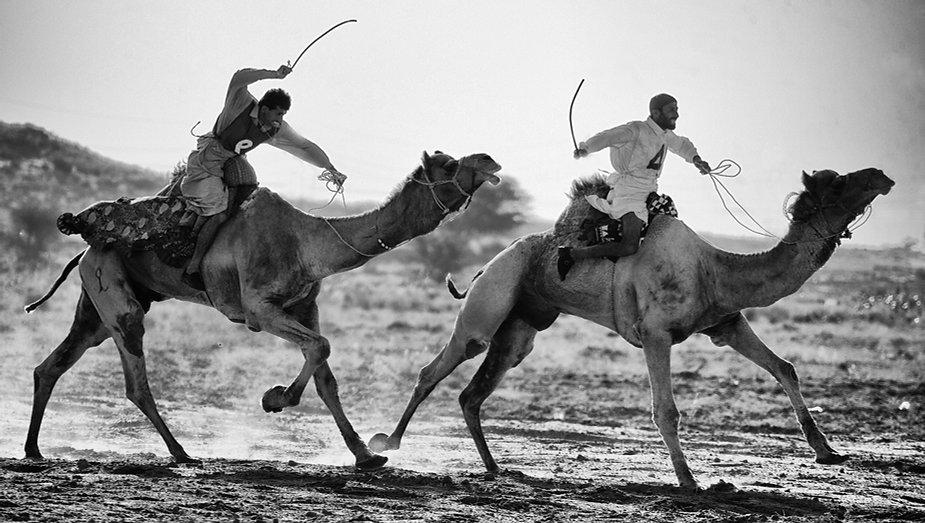 Camel race in the Thar desert, Rajasthan, monochrome by Michael Potter