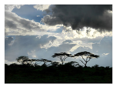 African Skyline, Tanzania by David Usill at Atelier Editions