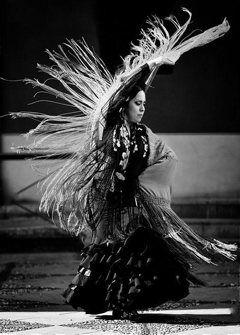 Flamenco dancer monochrome by Michael Potter