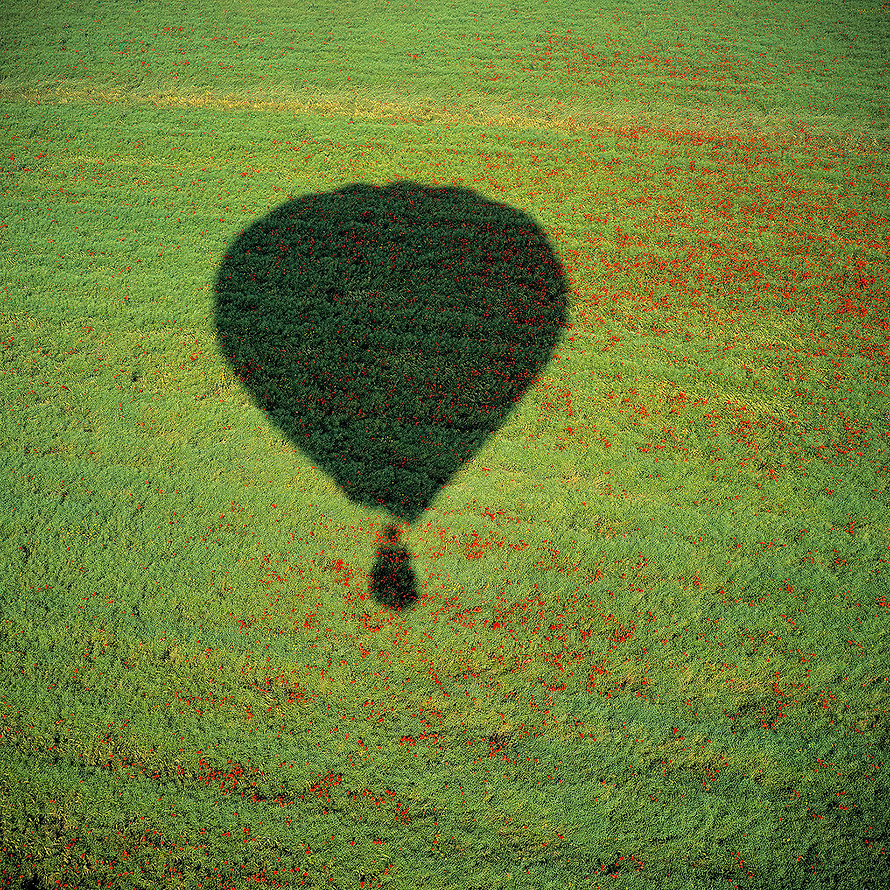 Hot air baloon shadow in a green and red poppy field, England