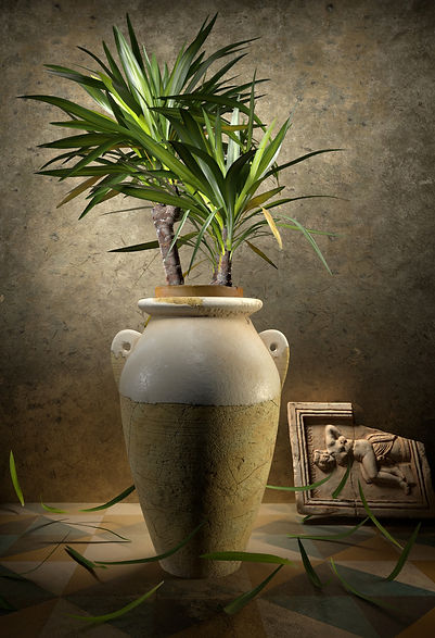 earthenware pot with yucca.