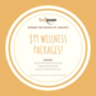 Jan wellness package.png