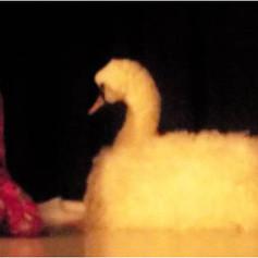The Christmas Swan 08.jpg