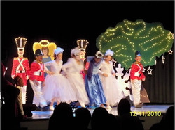 The Christmas Swan 09