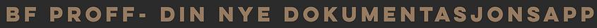 Skjermbilde 2021-02-04 kl. 22.09.09.png