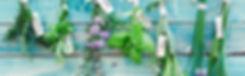 L'esprit t'nature, Château-Chalon, Jura, France. Nous avons eu à cœur de restaurer cette ancienne maison de village et son jardin avec des produits naturels et de créer des ambiances minérales et végétales pour votre confort.  Désormais, nous vous y accueillons autour de produits maison et locaux,  nous vous guidons dans cette région d'exception et ses multiples activités  et nous vous confions à nos partenaires. Bienvenue