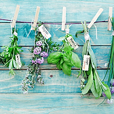 6 small bouquets & herbs