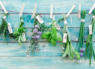 The Top Herbs You Must Add To Your Family's Grocery List And Why!