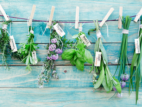 Herbs are not Just to accent your food