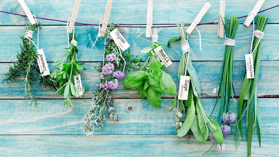 Assorted Kitchen Herbs