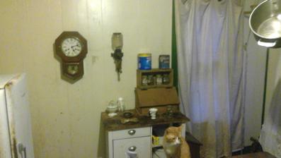 Temporalia House Kitchen 5 2017