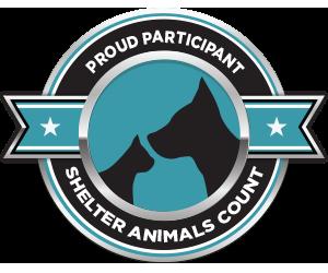 SAC Participant Badge.png