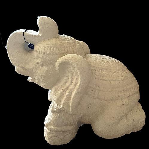 Eléphant blanc fibro ciment