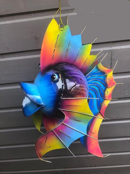Photophore poisson