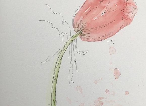 Tulip with Splatter