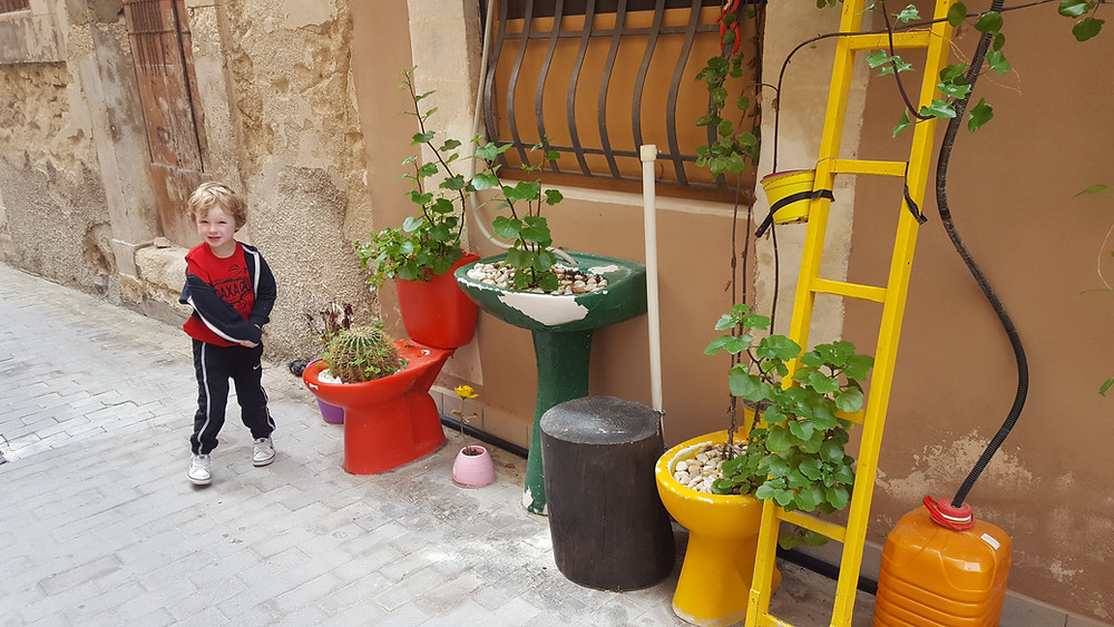 colorful toilets and sink with plants growing