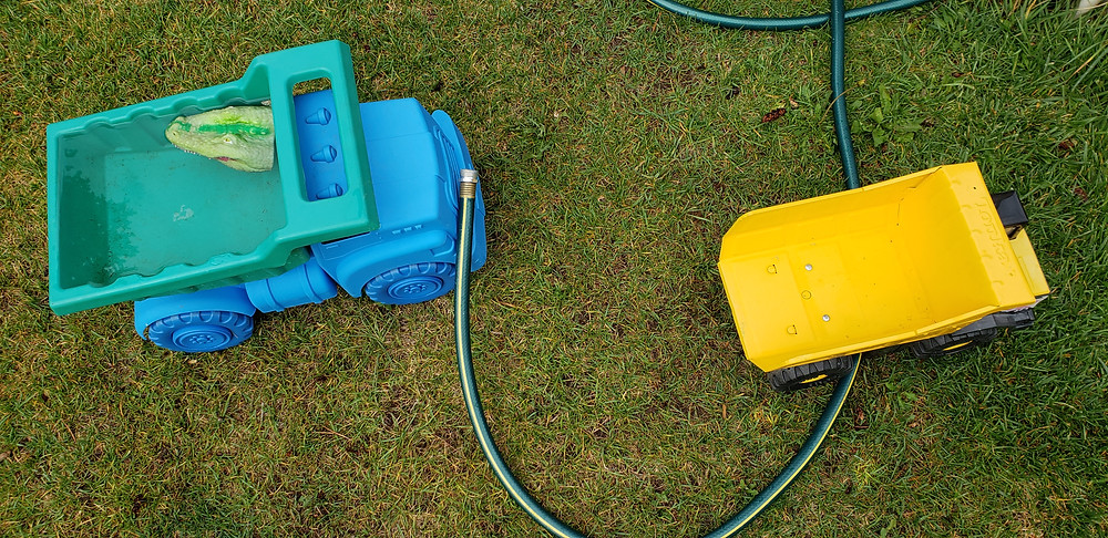 blue and yellow plastic dump truck toys and a garden hose