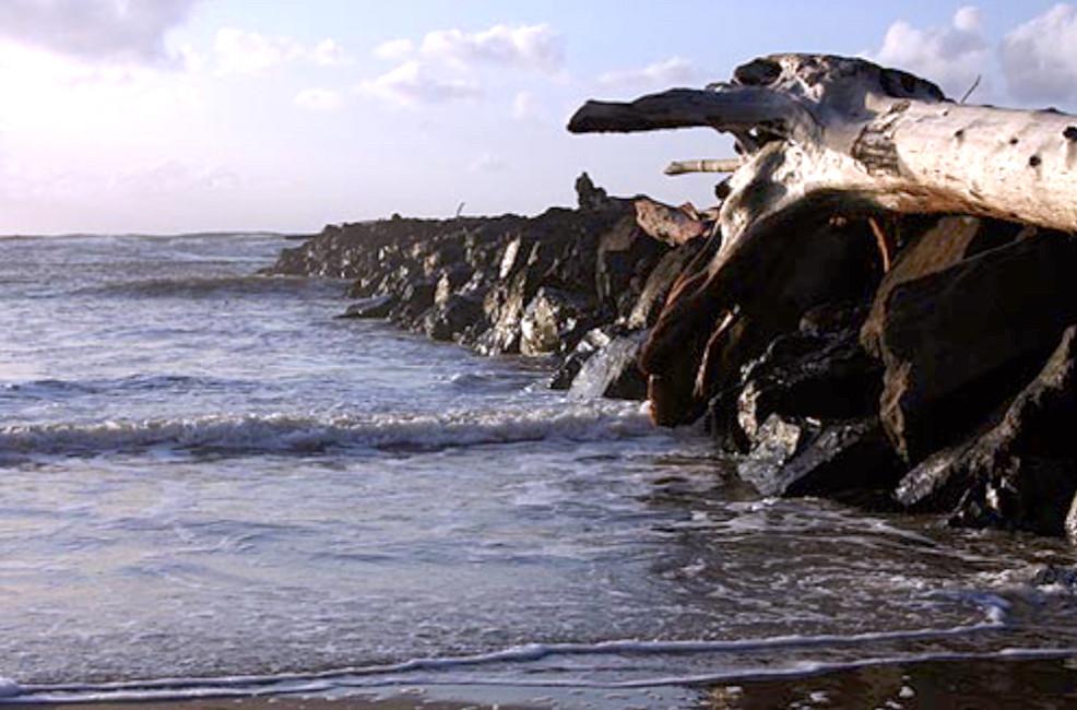 South Jetty of the Nehalem Bay