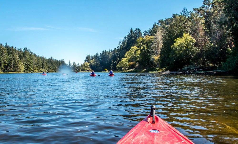 See the area by Kayak