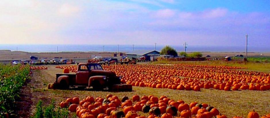 Halloween Fun – Manzanita and the North Oregon Coast