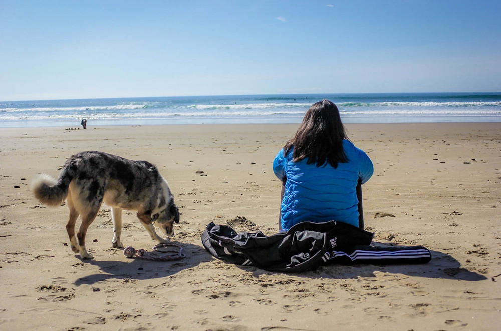 how to find the best pet friendly manzanita rental
