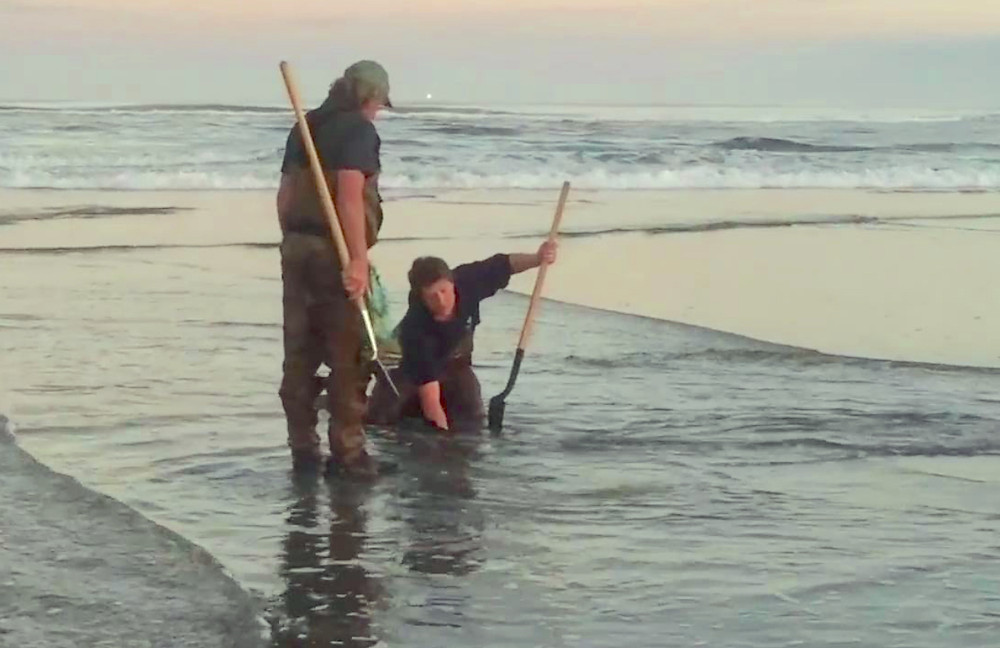 Dig Razor Clams During Oregon Clam Season