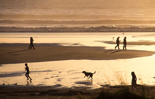 Pet friendly Manzanita rental houses