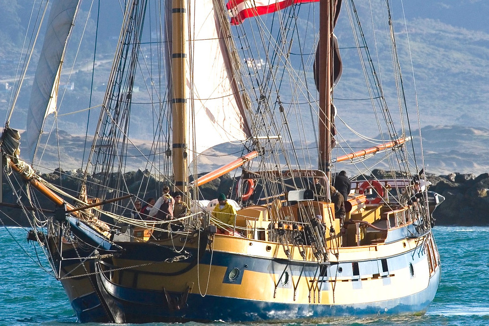 Hawaiian Chieftain from Greys Harbor Washington