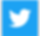 THIS-TWITTER-LOGO-300x275.png