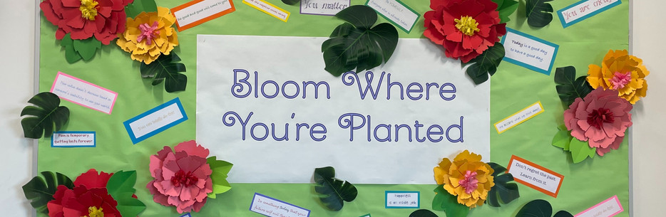 bloom bulletin
