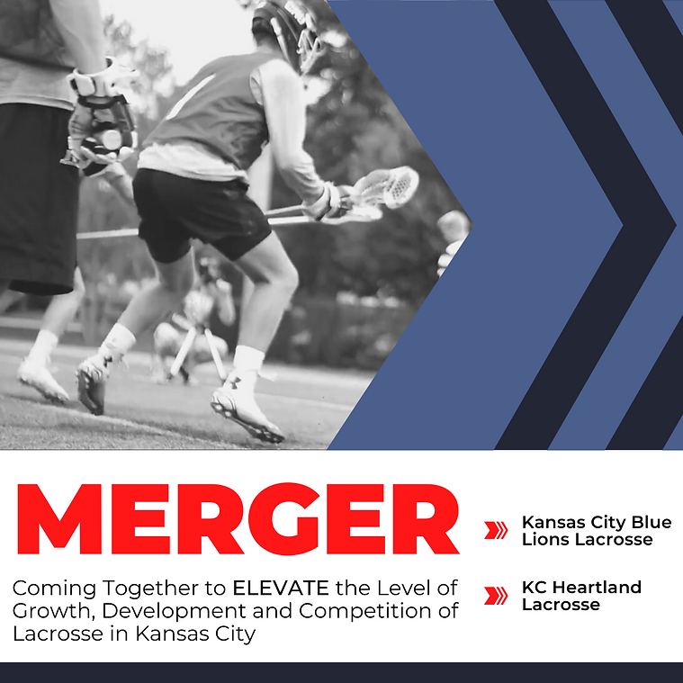 MERGER GRAPHIC 2.png
