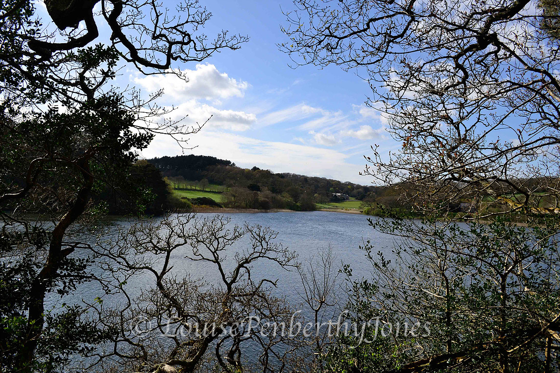 Lake at Loe Bar