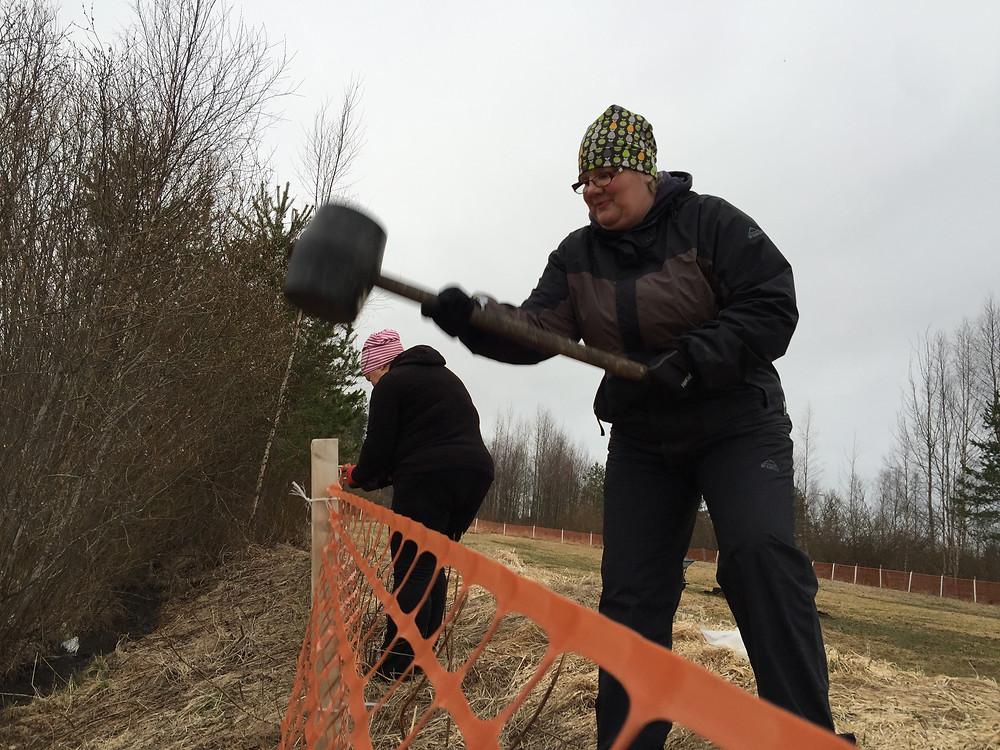 Aidan korjaus ja puiden kaato, Sievin ammattilaiset! :)