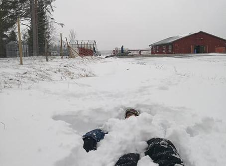 Suomalaiset KEVÄT-talkoot