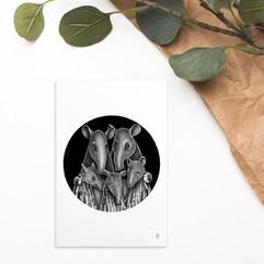 Tapir Family Postcard