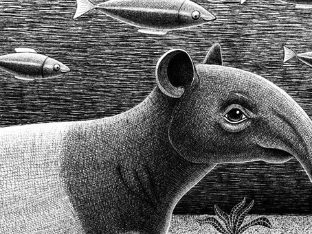 TAPIRS - The Gardeners of the Forest