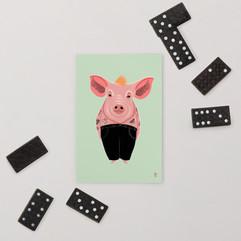 Cool Pig Postcard