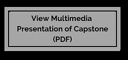 multimediabutton.png
