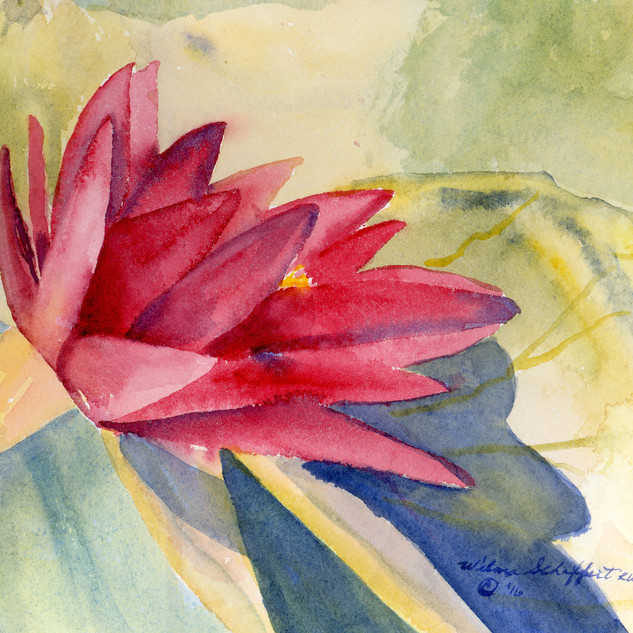 Water Lilies Two Plein Air_W/c