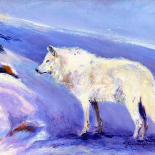 White Wolf_Acrylic