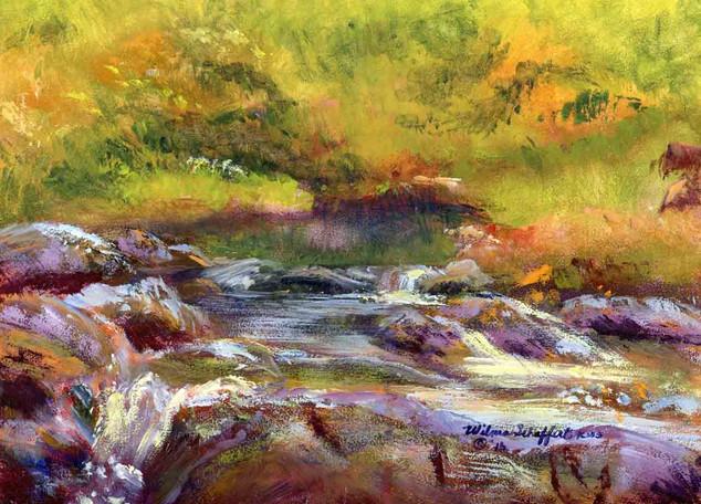 Hot Springs N P Gulpha Creek Acrylic