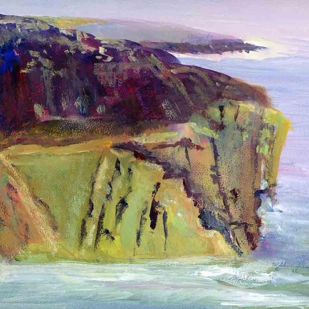 Schoodic Point Acadia N P_Acrylic