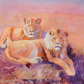 Roar Like A Lion_Watercolor