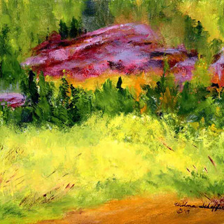 Endovalley Picnic Area Rocky Mountain National Park