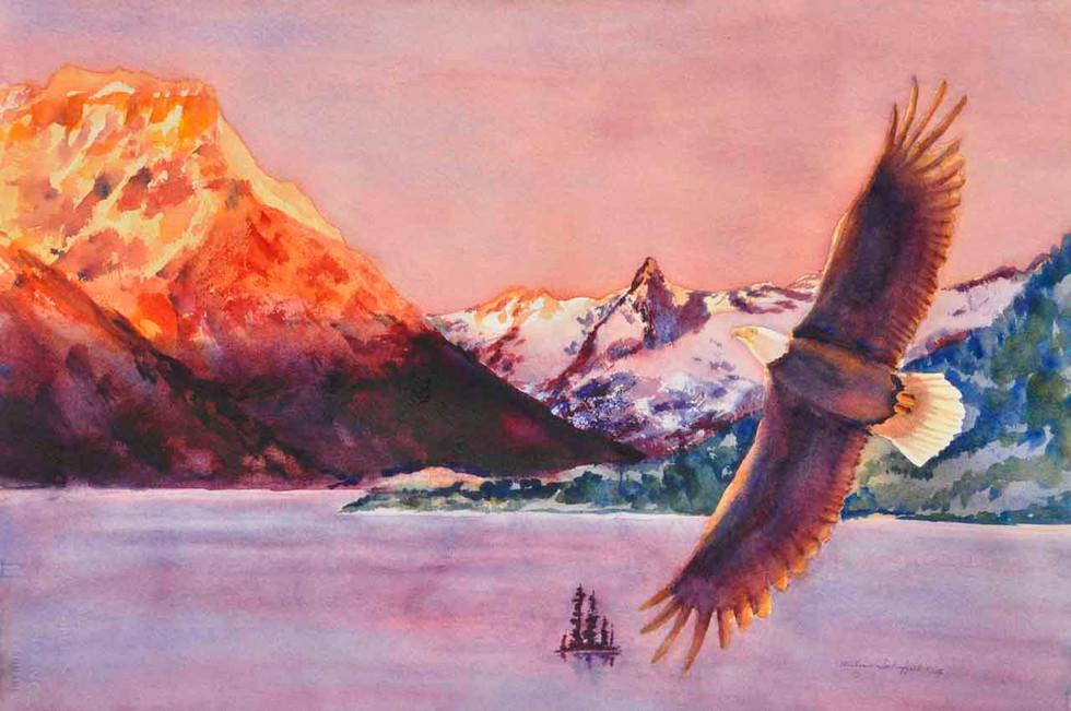Soaring Eagle G N P_W/c