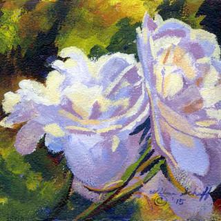 White Roses_Acrylic