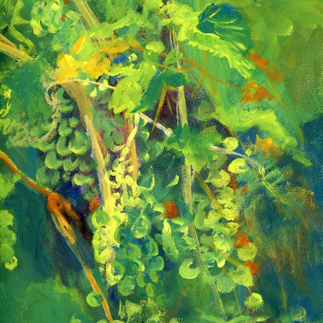 Soaring Wings Vineyard NE_Acrylic